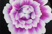 【良径美甲课堂】春天送你一池芙蓉,荡漾心情!