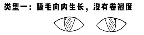 北京亚博app苹果版下载亚博体育官网软件下载造型学校 五大眼型分析1