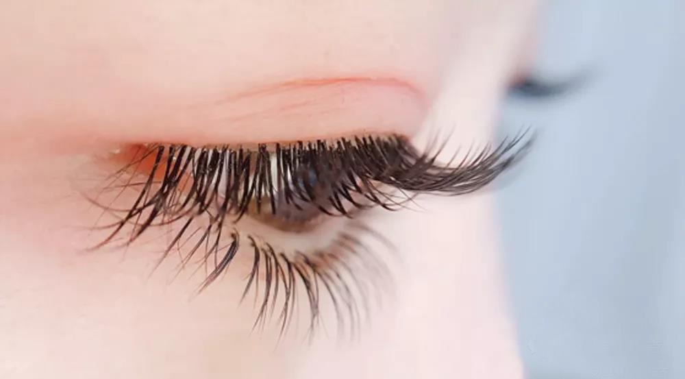 美甲美睫师必学的基本理论 睫毛粗度和长度有哪些?
